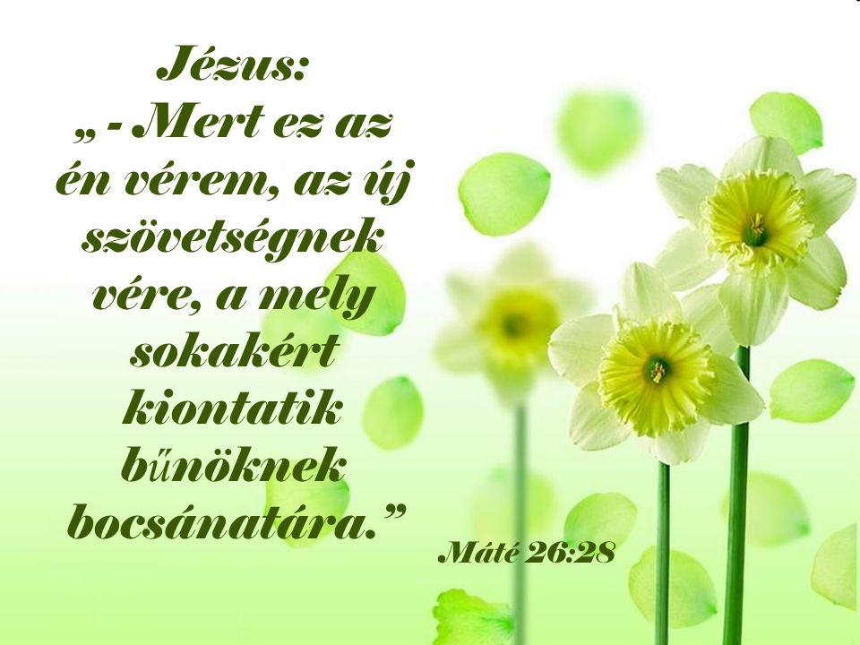 """Jézus: """" - Mert ez az én vérem, az új szövetségnek vére, a mely sokakért kiontatik bűnöknek bocsánatára."""