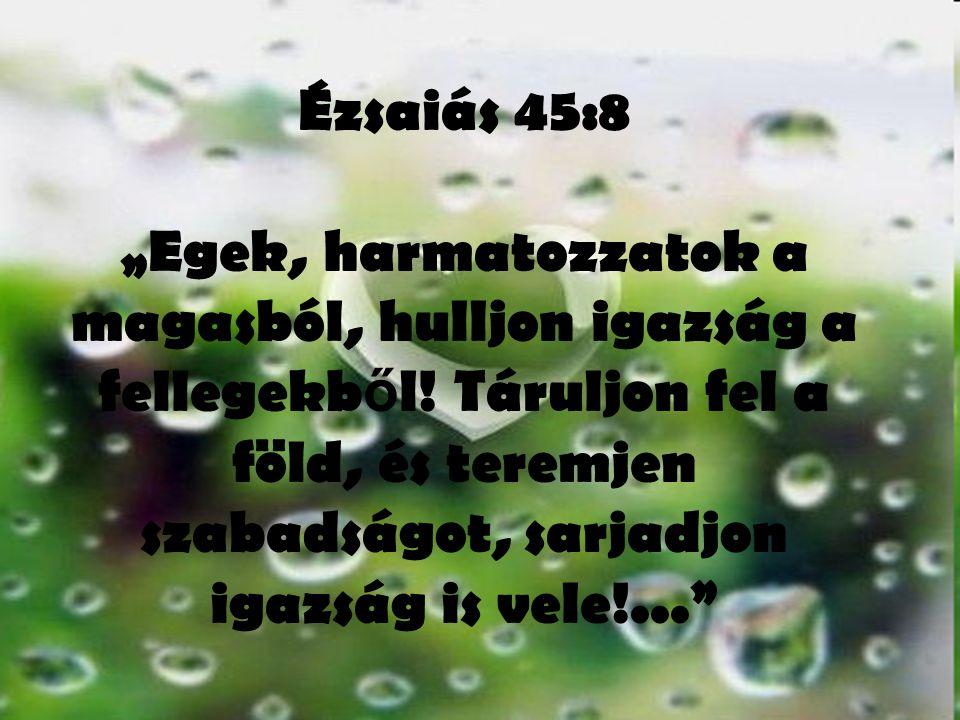 """Ézsaiás 45:8 """"Egek, harmatozzatok a magasból, hulljon igazság a fellegekből."""