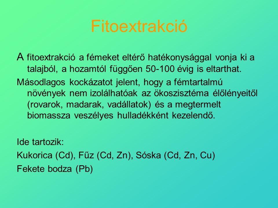 Fitoextrakció A fitoextrakció a fémeket eltérő hatékonysággal vonja ki a talajból, a hozamtól függően 50-100 évig is eltarthat.