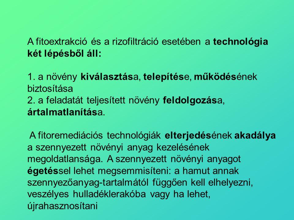 A fitoextrakció és a rizofiltráció esetében a technológia két lépésből áll: