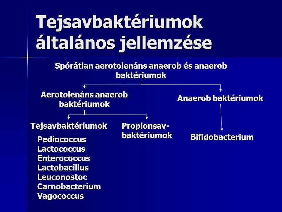 Tejsavbaktériumok általános jellemzése