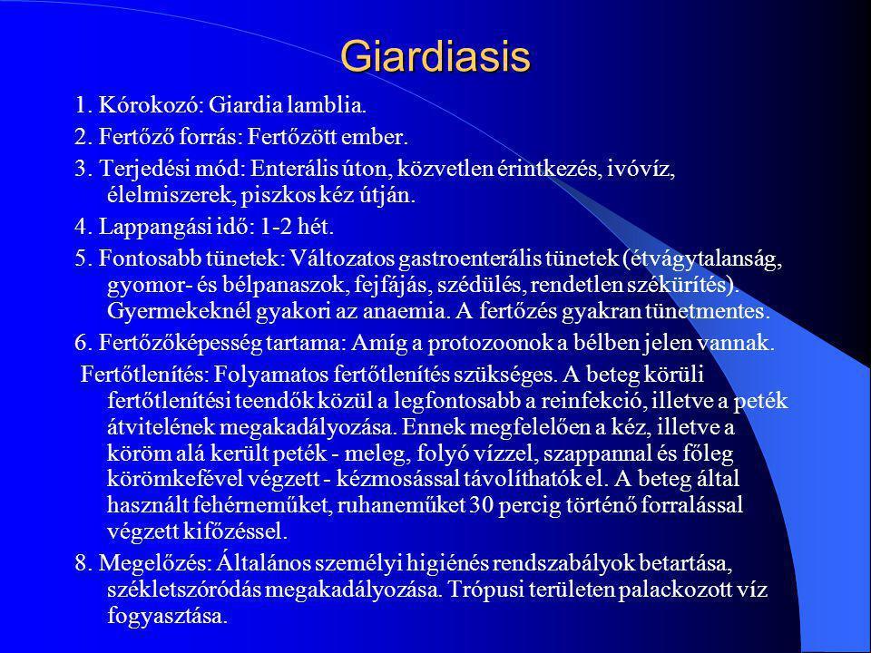 Giardiasis 1. Kórokozó: Giardia lamblia.