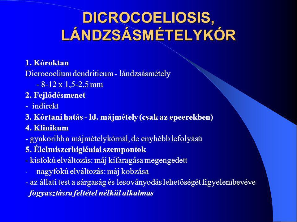 DICROCOELIOSIS, LÁNDZSÁSMÉTELYKÓR