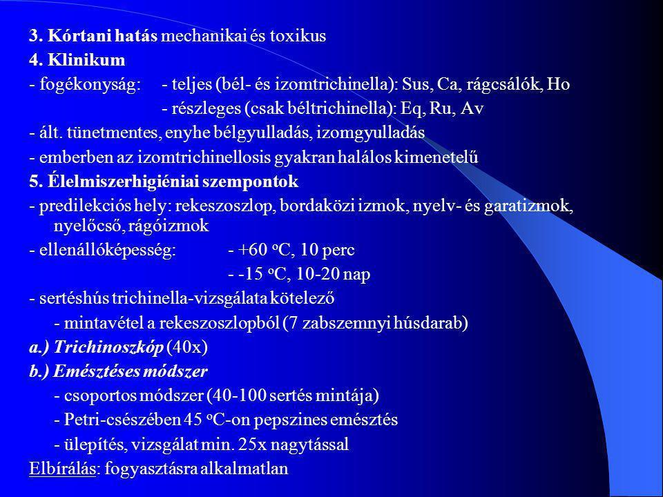 3. Kórtani hatás mechanikai és toxikus