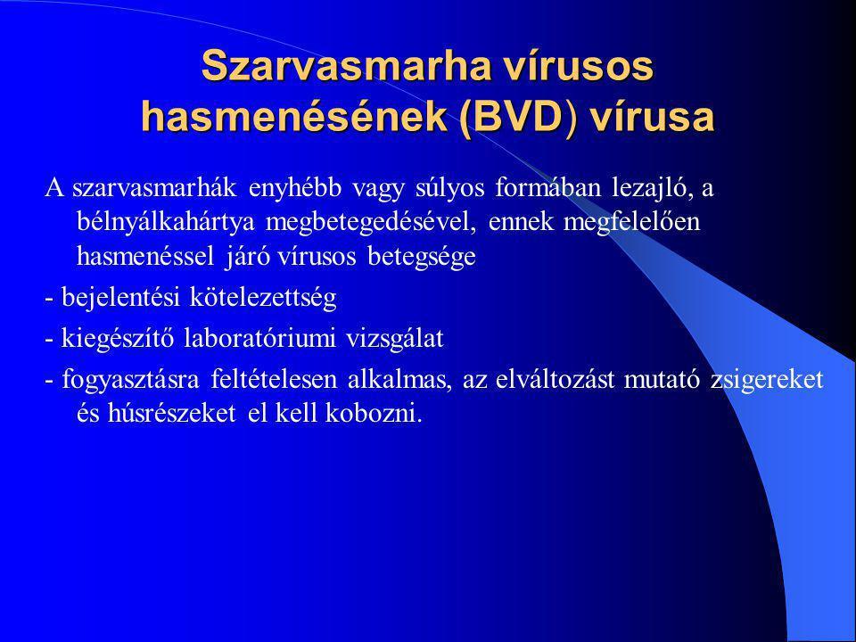 Szarvasmarha vírusos hasmenésének (BVD) vírusa