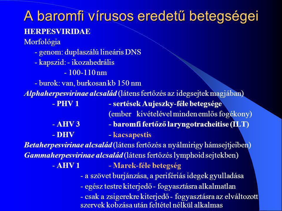 A baromfi vírusos eredetű betegségei