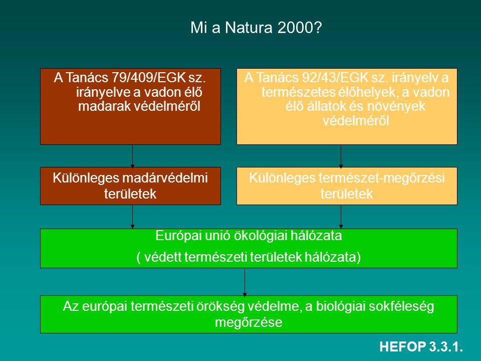 Mi a Natura 2000 A Tanács 79/409/EGK sz. irányelve a vadon élő madarak védelméről.