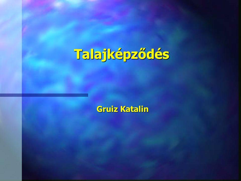 Talajképződés Gruiz Katalin