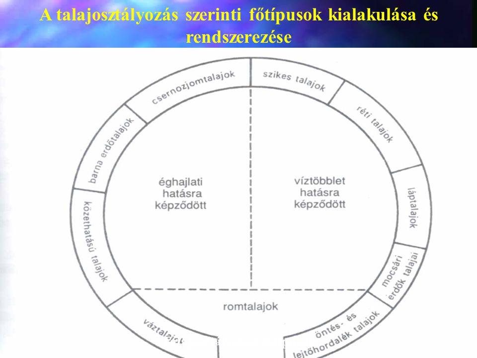 A talajosztályozás szerinti főtípusok kialakulása és rendszerezése