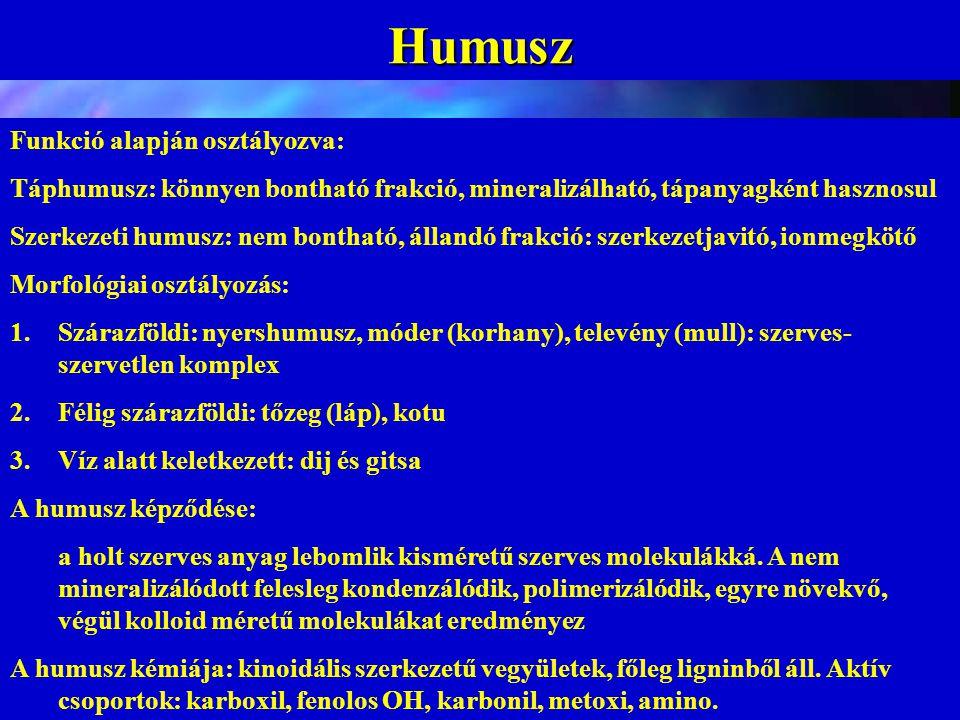 Humusz Funkció alapján osztályozva: