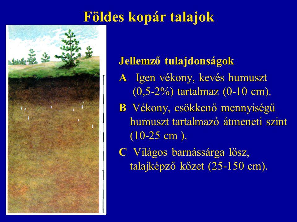 Földes kopár talajok Jellemző tulajdonságok