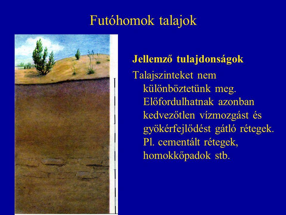 Futóhomok talajok Jellemző tulajdonságok