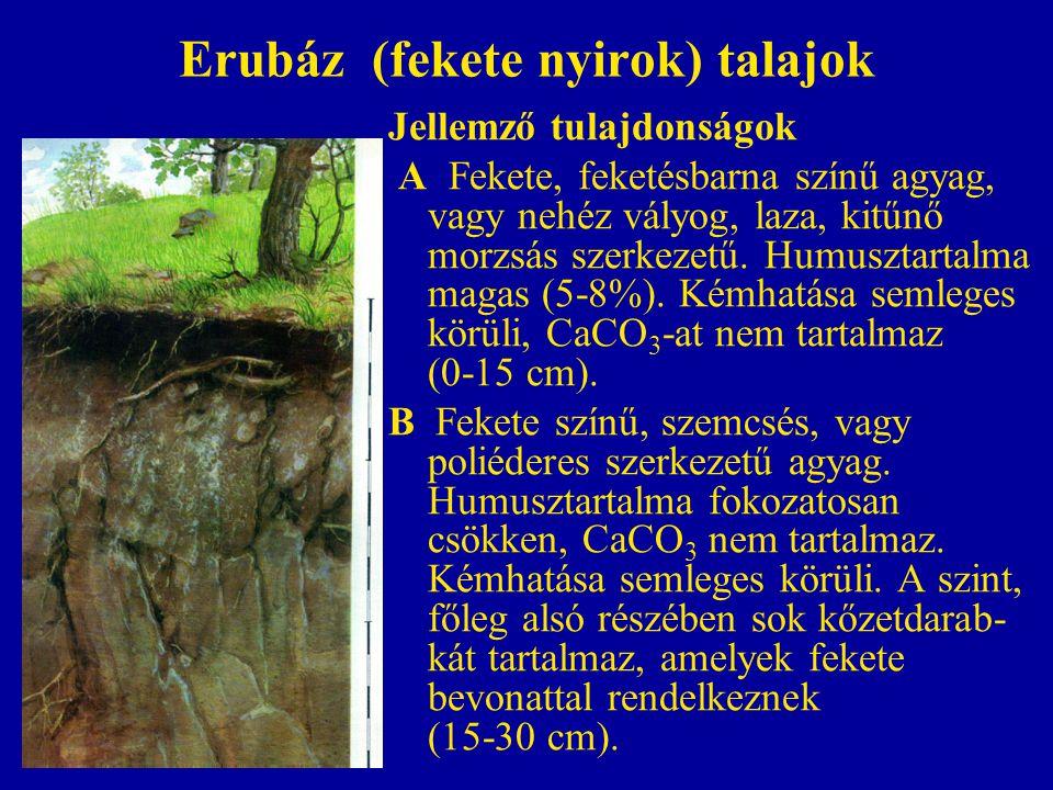Erubáz (fekete nyirok) talajok