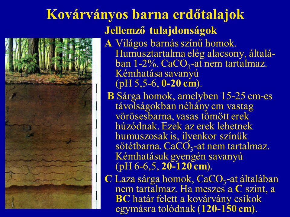 Kovárványos barna erdőtalajok