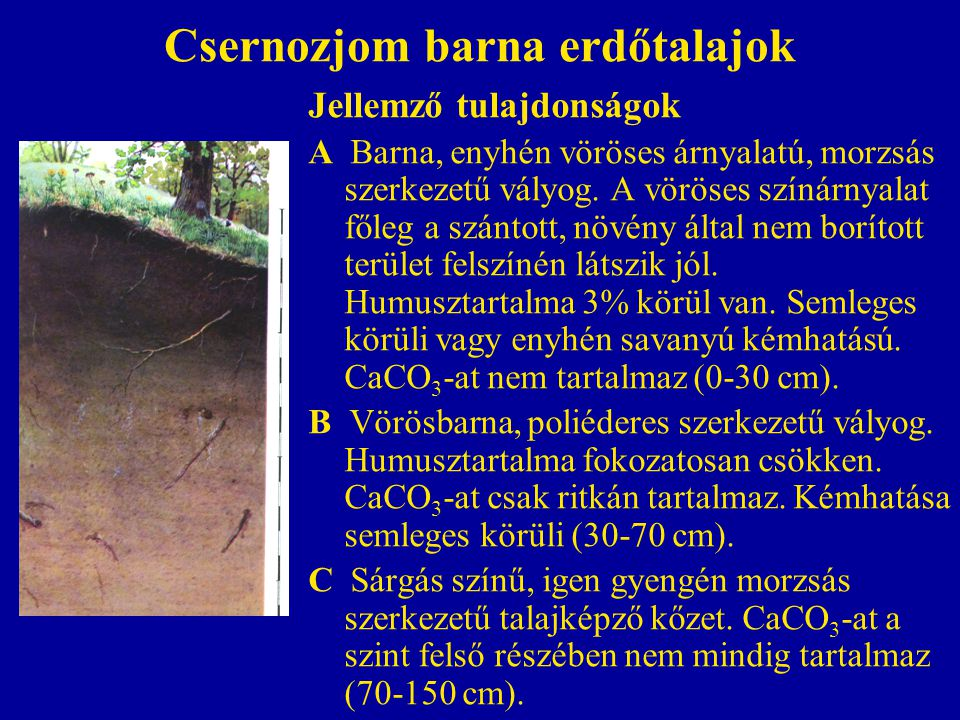 Csernozjom barna erdőtalajok