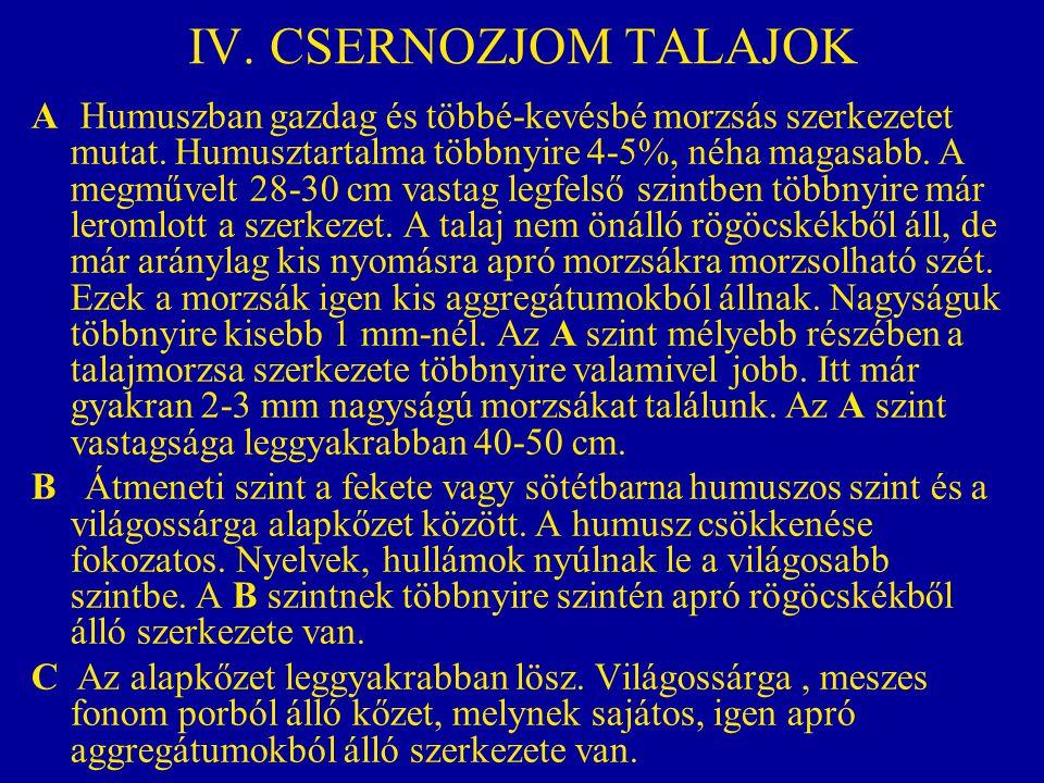 IV. CSERNOZJOM TALAJOK