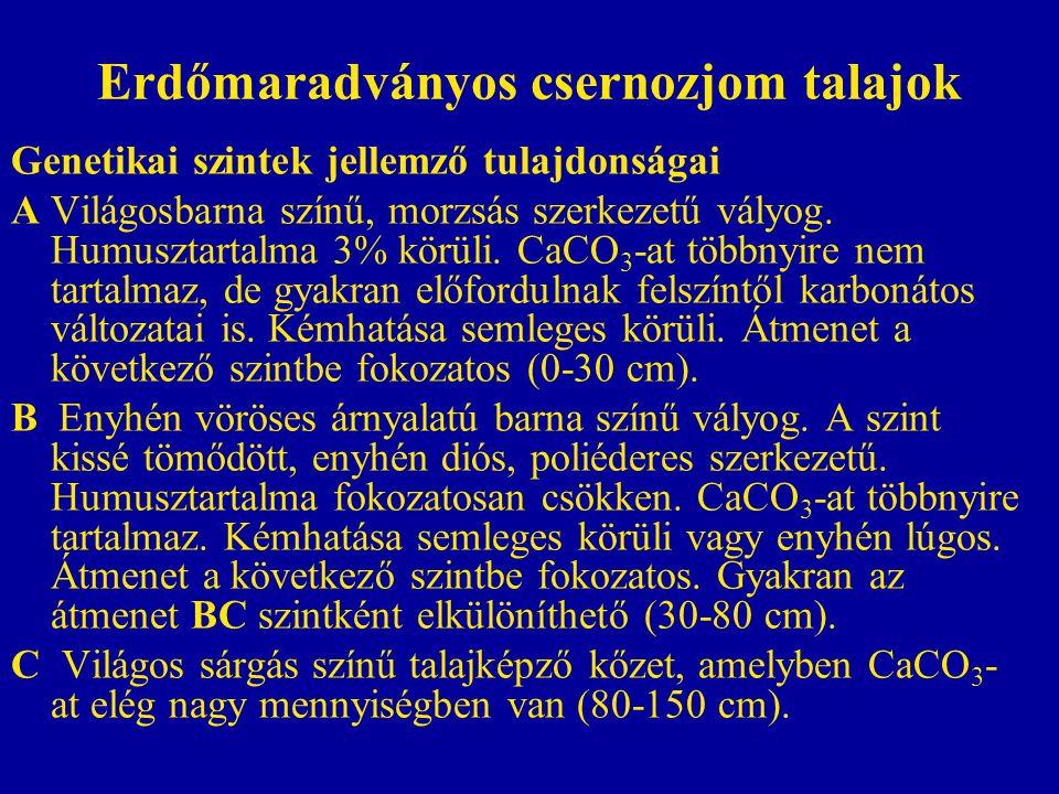 Erdőmaradványos csernozjom talajok