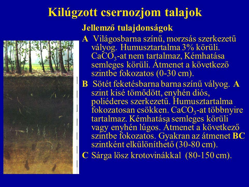Kilúgzott csernozjom talajok