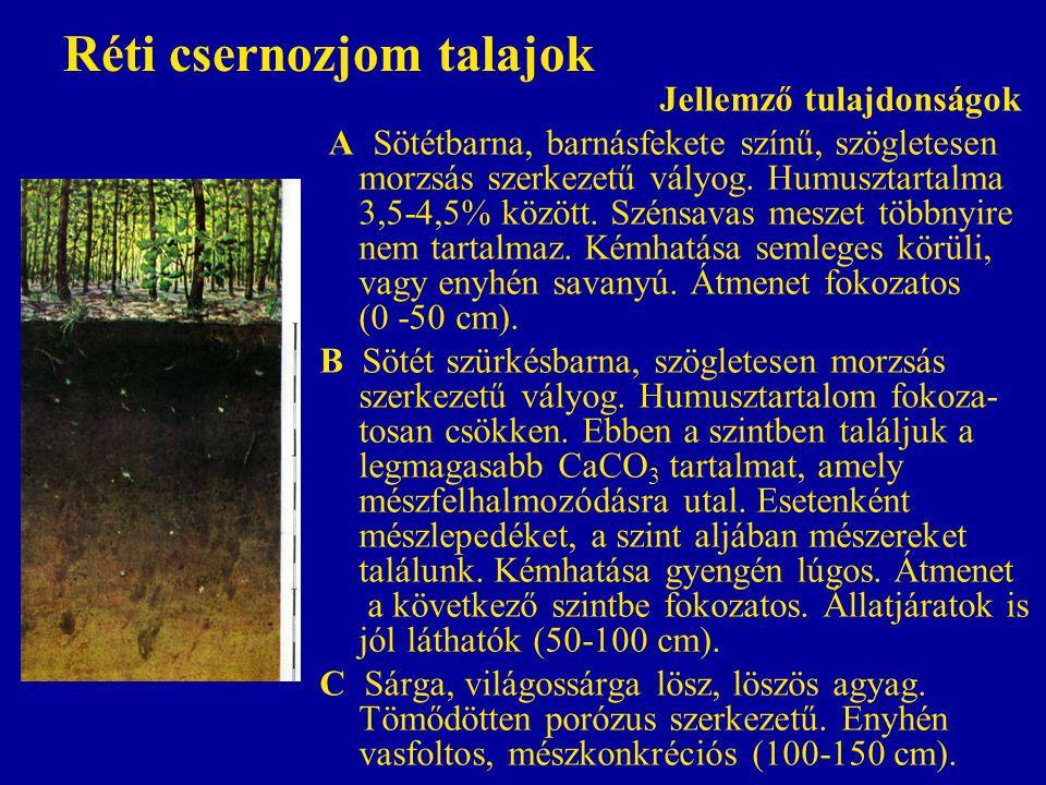 Réti csernozjom talajok