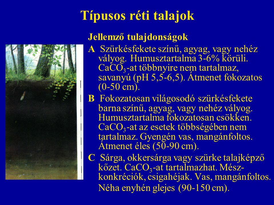 Típusos réti talajok Jellemző tulajdonságok