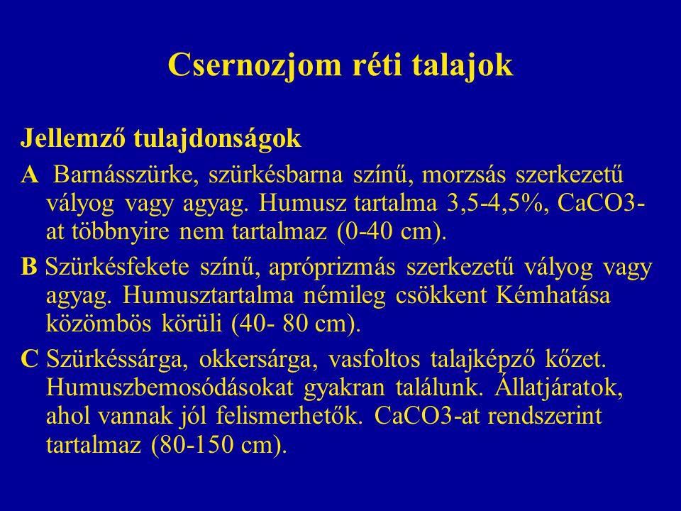 Csernozjom réti talajok