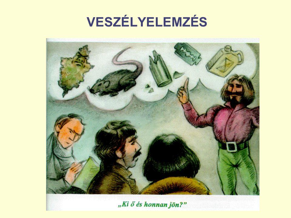 VESZÉLYELEMZÉS