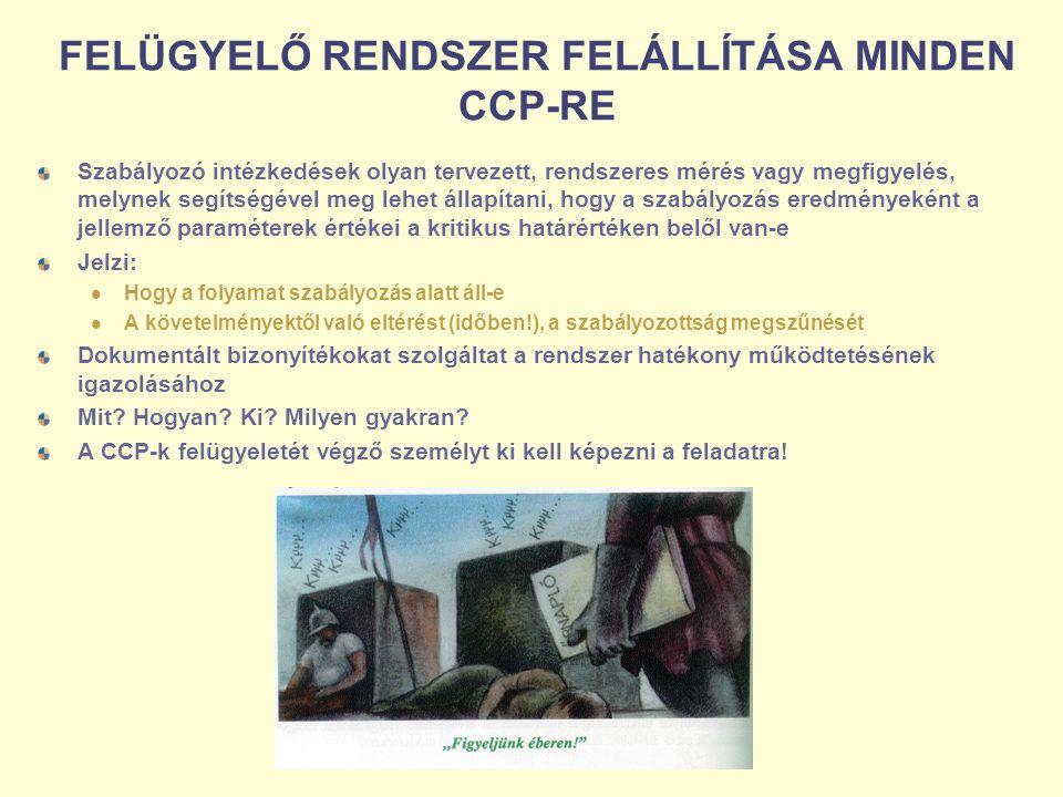 FELÜGYELŐ RENDSZER FELÁLLÍTÁSA MINDEN CCP-RE