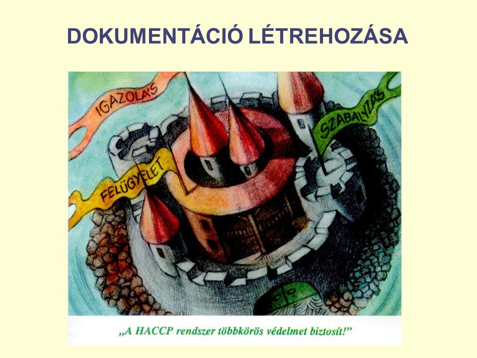 DOKUMENTÁCIÓ LÉTREHOZÁSA