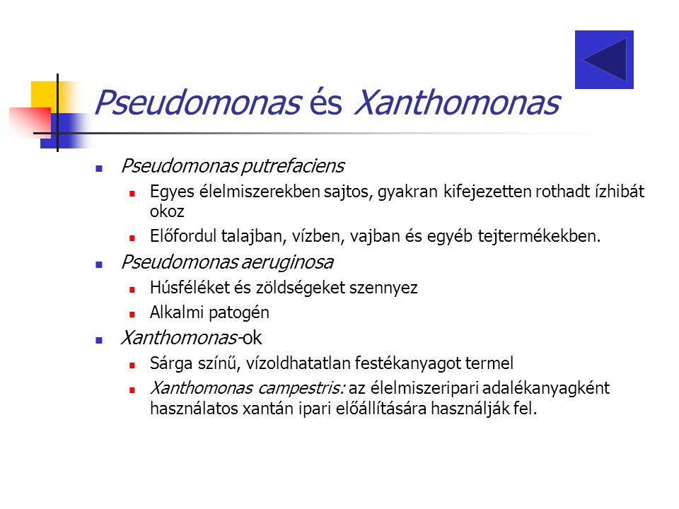 Pseudomonas és Xanthomonas