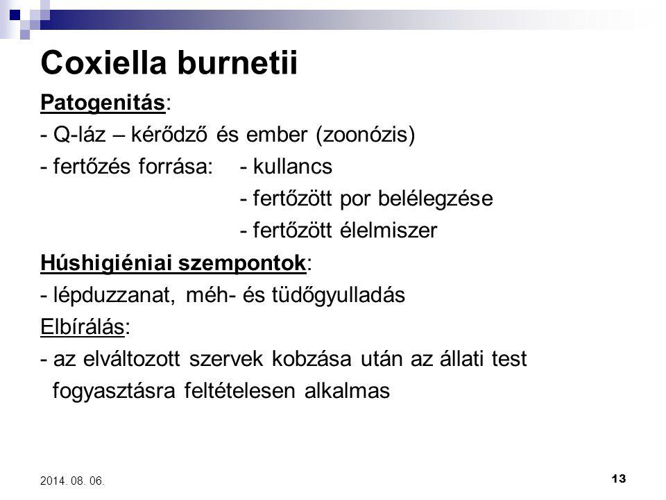 Coxiella burnetii Patogenitás: - Q-láz – kérődző és ember (zoonózis)