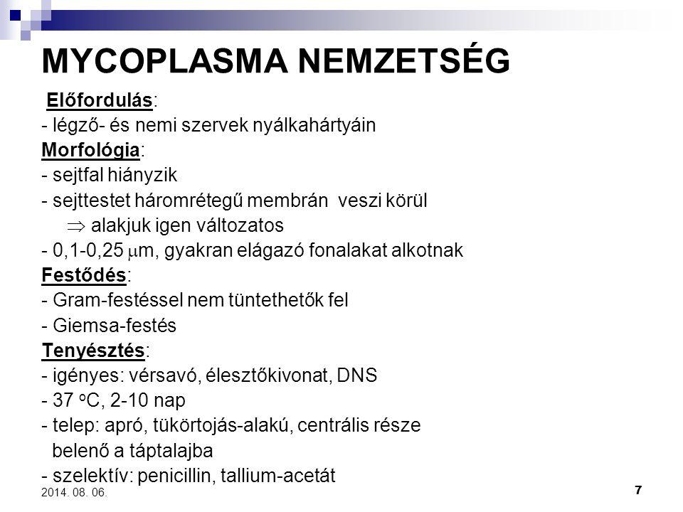 MYCOPLASMA NEMZETSÉG Előfordulás: