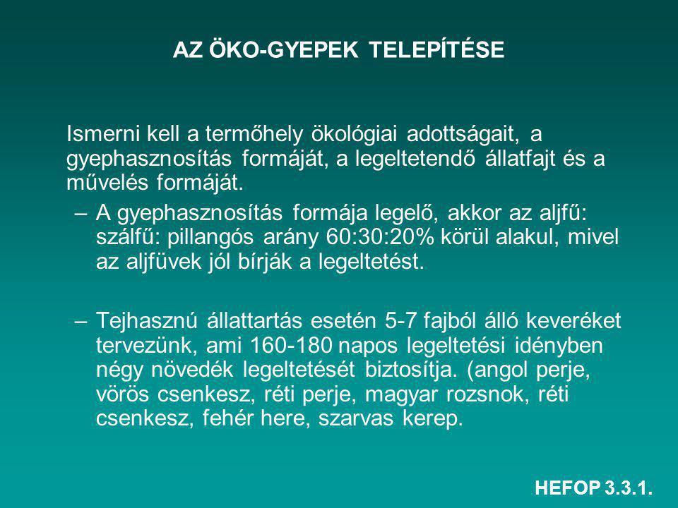 AZ ÖKO-GYEPEK TELEPÍTÉSE