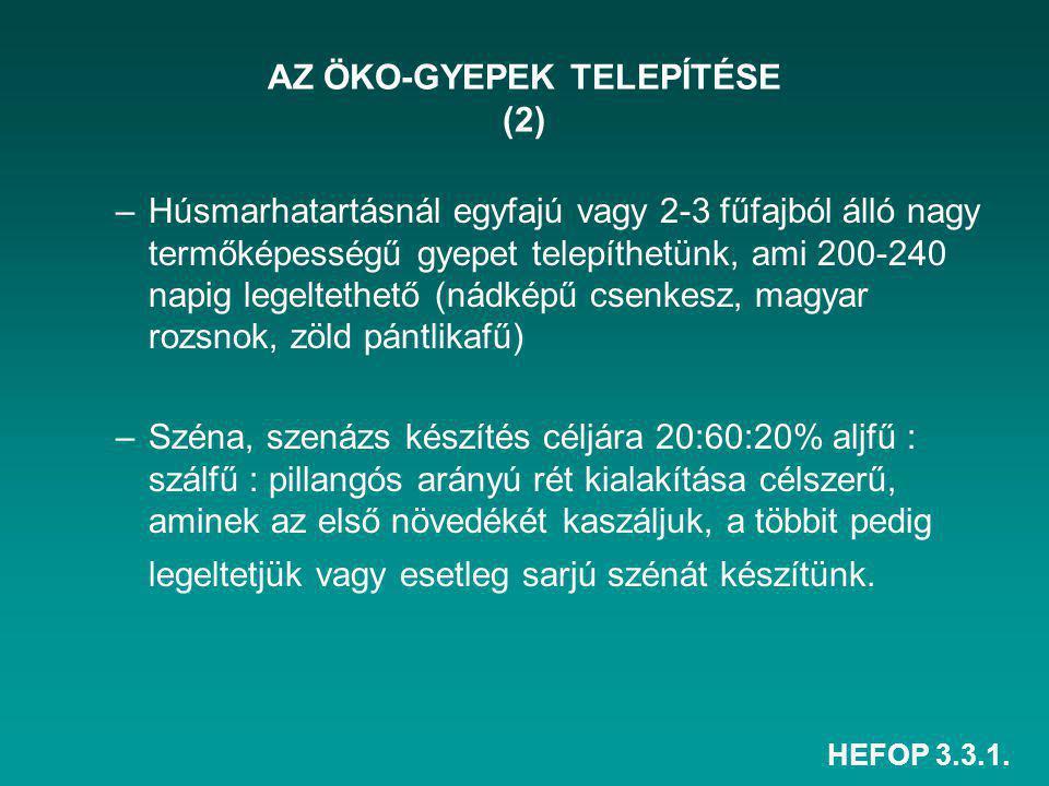 AZ ÖKO-GYEPEK TELEPÍTÉSE (2)