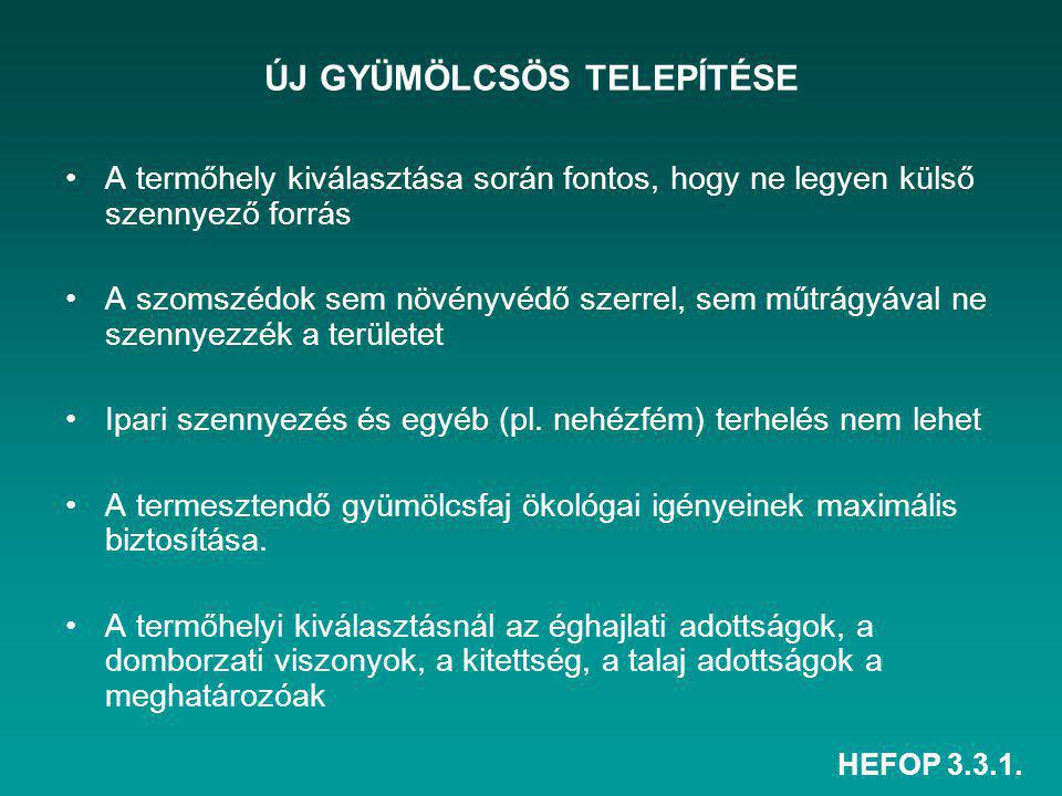 ÚJ GYÜMÖLCSÖS TELEPÍTÉSE