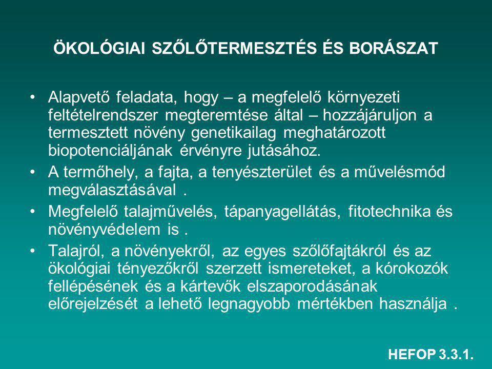 ÖKOLÓGIAI SZŐLŐTERMESZTÉS ÉS BORÁSZAT