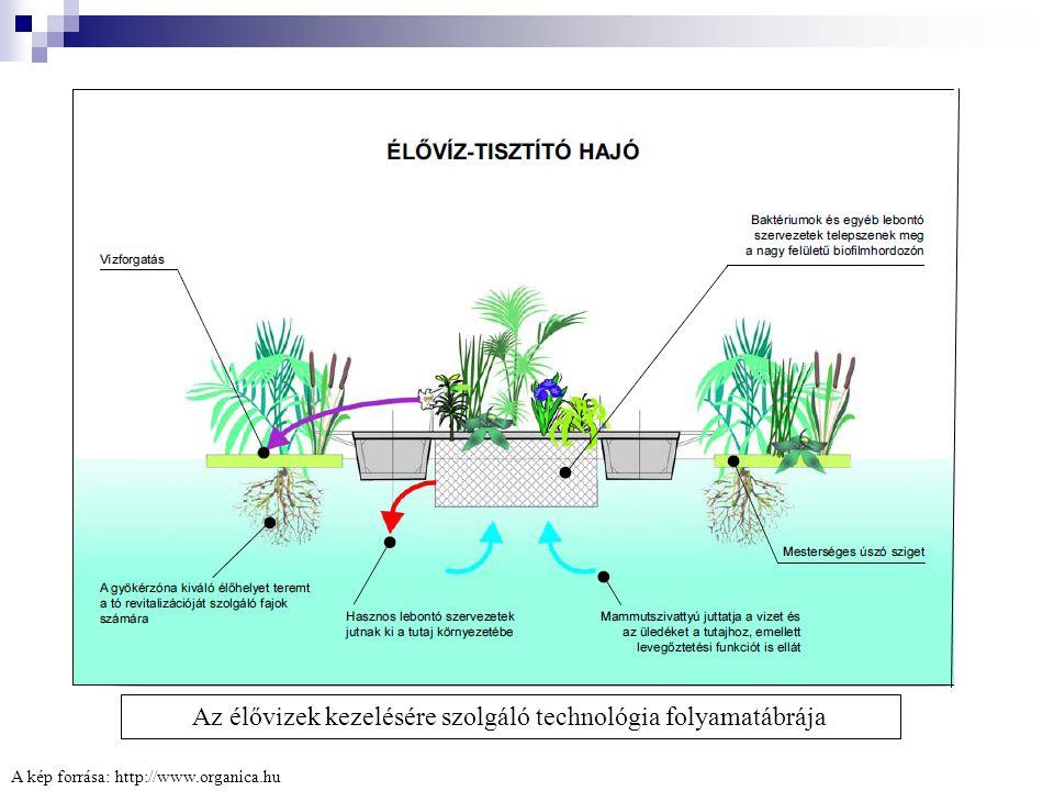 Az élővizek kezelésére szolgáló technológia folyamatábrája