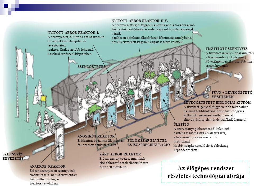 Az élőgépes rendszer részletes technológiai ábrája