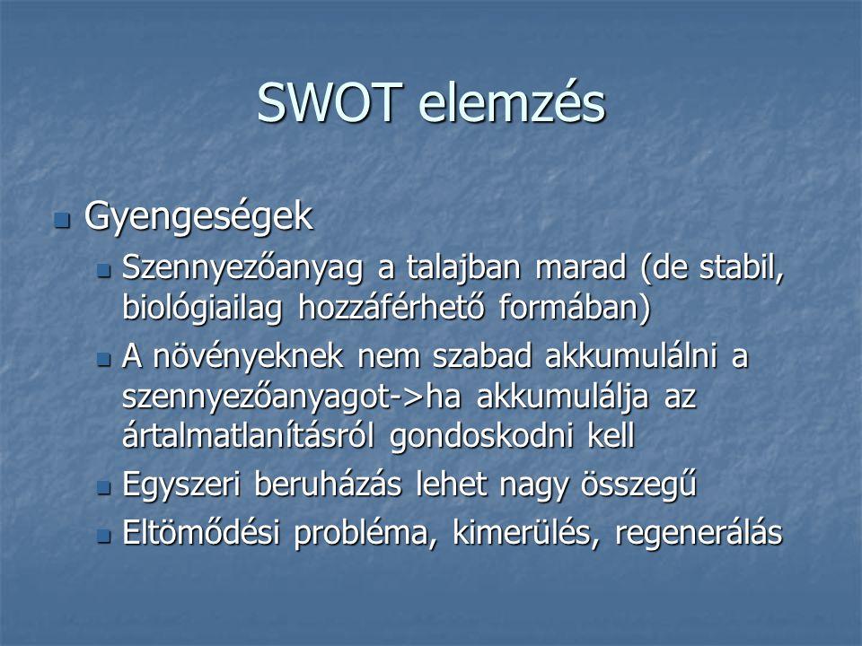 SWOT elemzés Gyengeségek