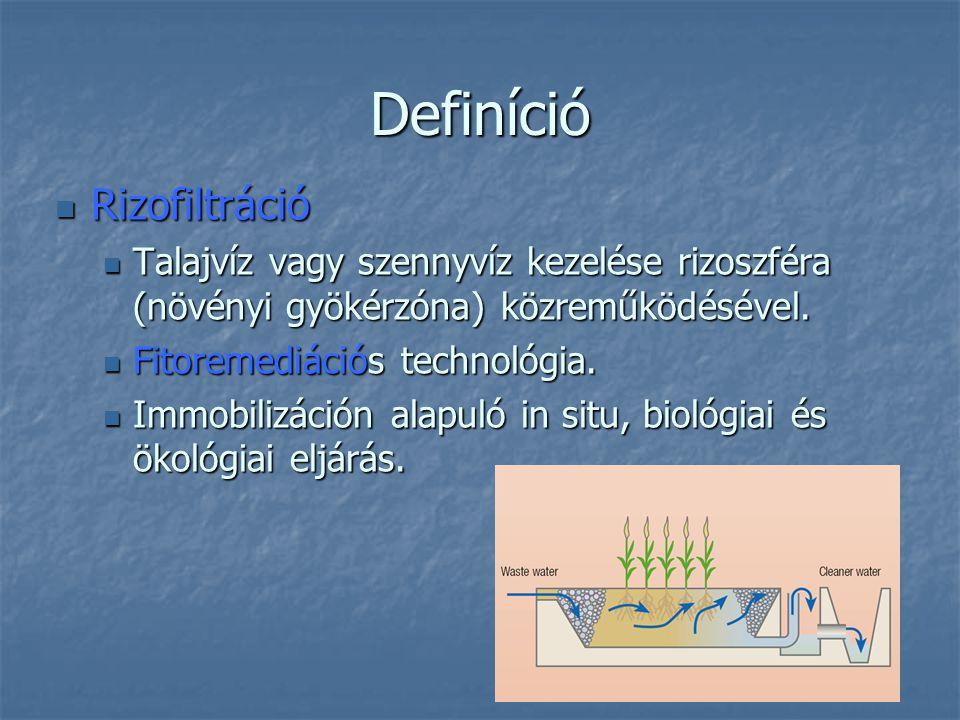 Definíció Rizofiltráció