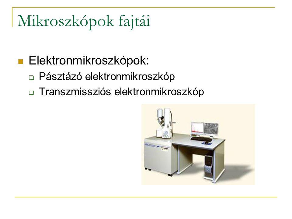 Mikroszkópok fajtái Elektronmikroszkópok: Pásztázó elektronmikroszkóp