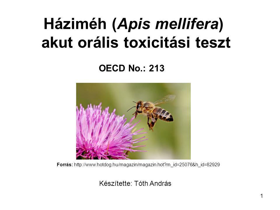 Háziméh (Apis mellifera) akut orális toxicitási teszt