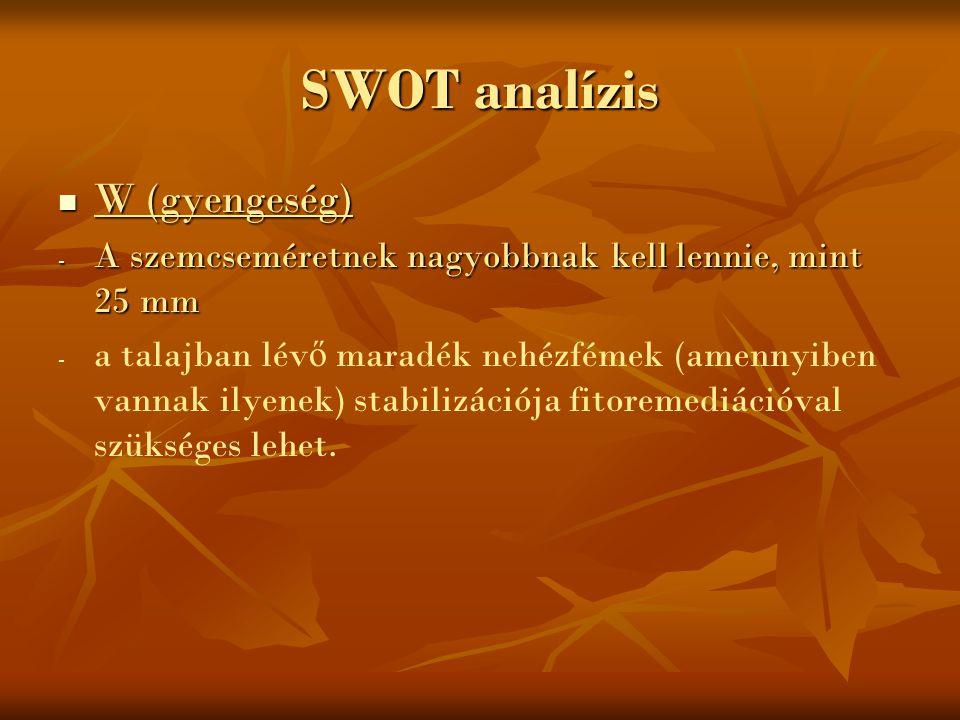 SWOT analízis W (gyengeség)