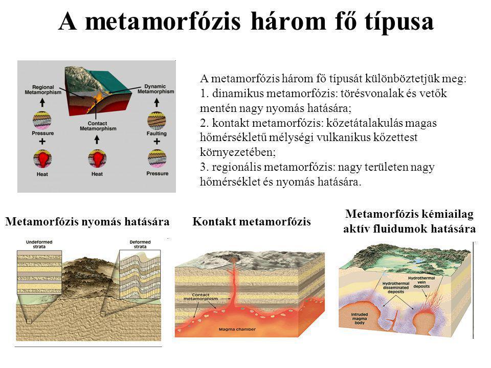 A metamorfózis három fő típusa