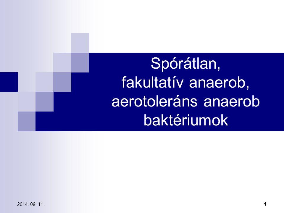 Spórátlan, fakultatív anaerob, aerotoleráns anaerob baktériumok