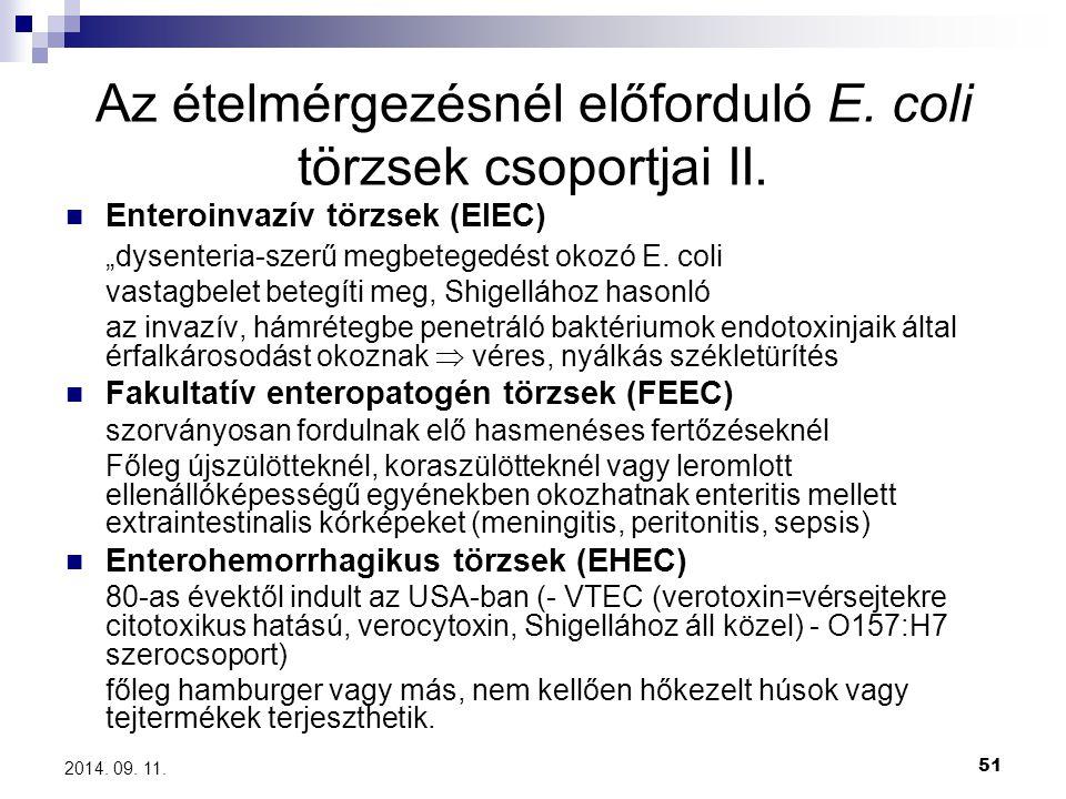 Az ételmérgezésnél előforduló E. coli törzsek csoportjai II.
