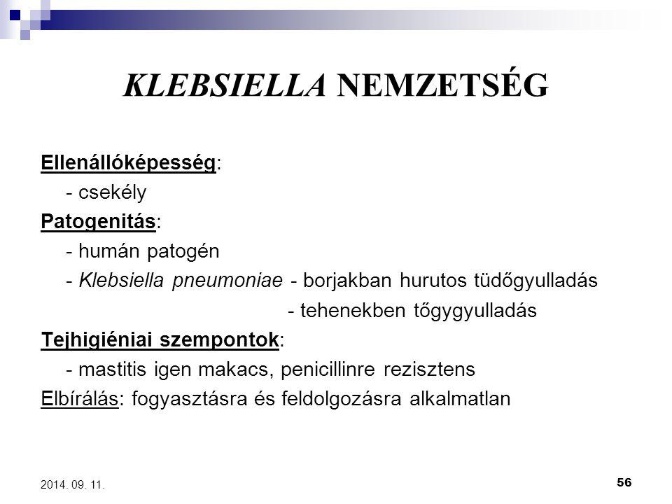 KLEBSIELLA NEMZETSÉG Ellenállóképesség: - csekély Patogenitás: