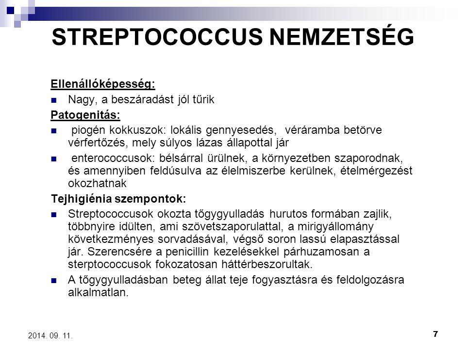 STREPTOCOCCUS NEMZETSÉG