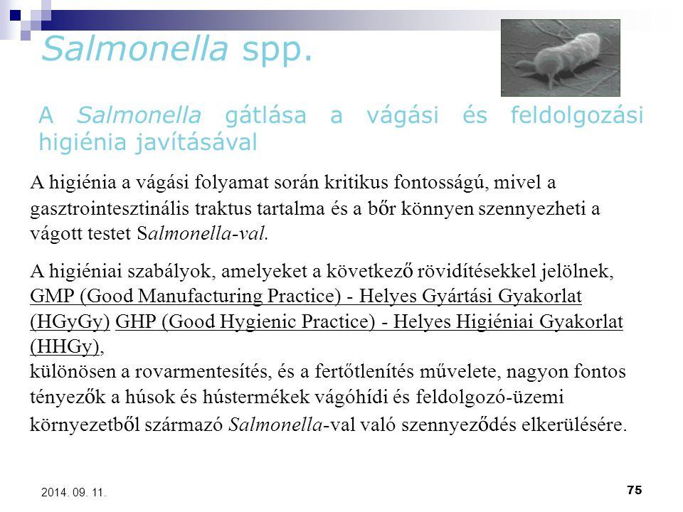 Salmonella spp. A Salmonella gátlása a vágási és feldolgozási higiénia javításával.