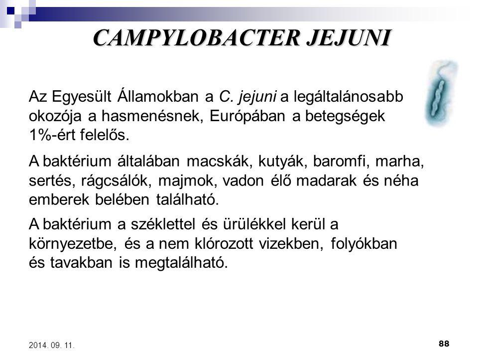 CAMPYLOBACTER JEJUNI Az Egyesült Államokban a C. jejuni a legáltalánosabb okozója a hasmenésnek, Európában a betegségek 1%-ért felelős.