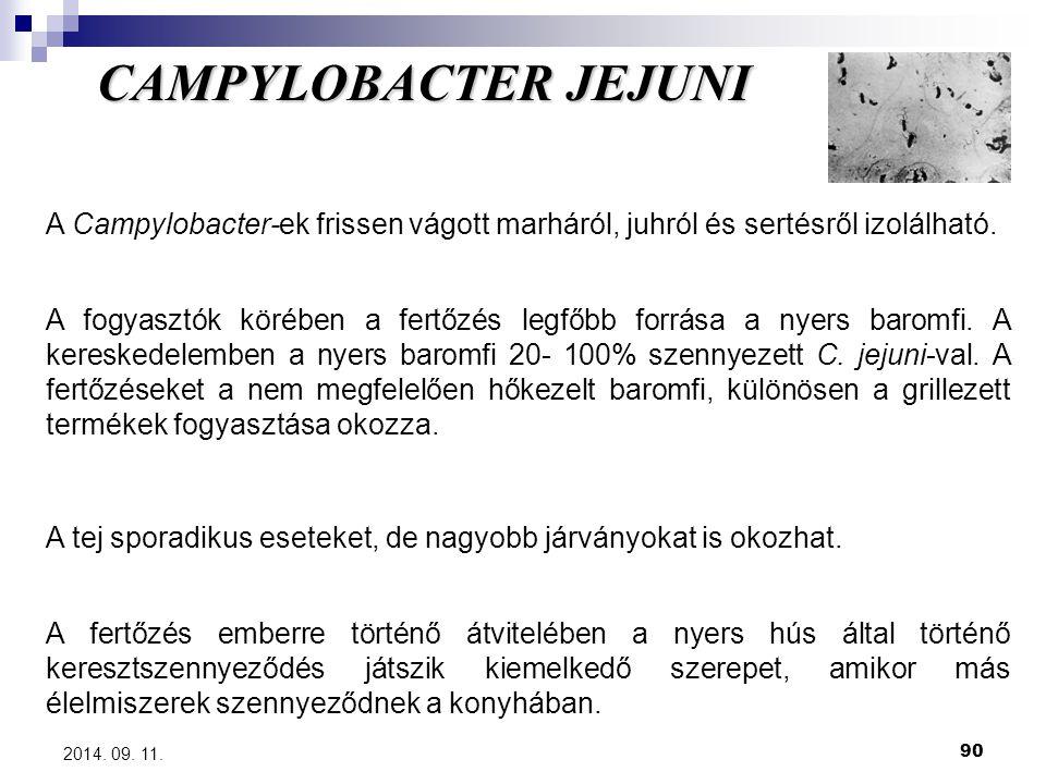 CAMPYLOBACTER JEJUNI A Campylobacter-ek frissen vágott marháról, juhról és sertésről izolálható.